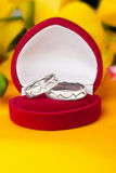 Wedding rings made of white gold Stock Images