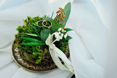 Wedding rings moss. Golden wedding rings on green moss, rustic style Stock Photo