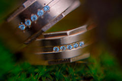 Wedding rings on moss macro. Two gold wedding rings lying on green moss macro Royalty Free Stock Photo