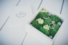 Wedding rings on moss Royalty Free Stock Images