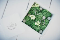 Wedding rings on moss Royalty Free Stock Image