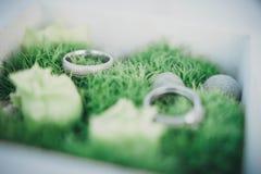 Wedding rings on moss Stock Photo