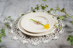 Wedding rings with a narcissus Royalty Free Stock Photography