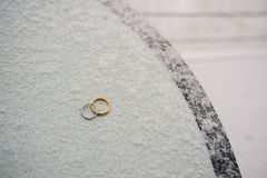 Wedding rings of newlyweds in the snow. Engagement gold rings Stock Image