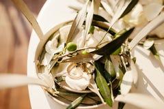 Wedding rings in olive leaves macro Stock Photos