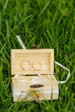 Wedding rings in an open wooden box with white ribbons in the gr. Ass. Outdoor shot with natural light Stock Photo