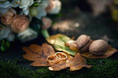 Rings Of Autumn. Wedding rings on an orange autumn oak leaf royalty free stock photography