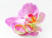 Wedding Rings. On an orchid Stock Photos