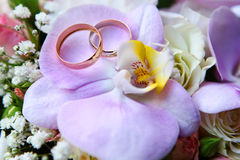 Wedding rings on orchid Royalty Free Stock Image