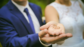 Wedding rings in the palms newlyweds Royalty Free Stock Image