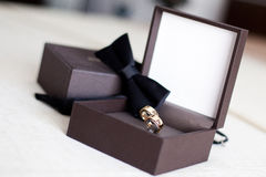Wedding rings with papillon Stock Images