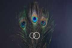 Wedding rings and peacock feathers. Gold wedding rings and peacock feathers on a wooden table Stock Image