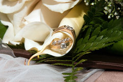 Wedding Rings in the Petals. Wedding rings on the bride's bouquet of flowers Stock Photography