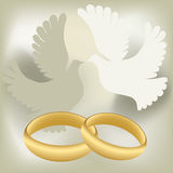 Wedding rings with pigeons Stock Photos