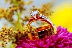 Wedding rings pink dahlias floral arrangement for a  with. Wedding rings pink dahlias floral arrangement for a wedding with wedding rings Stock Image