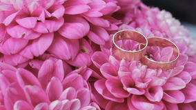 Wedding rings are on pink flowers, Wedding attributes, background. Wedding rings are on pink flowers stock video footage