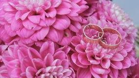 Wedding rings are on pink flowers, Wedding attributes, background. Wedding rings are on pink flowers, attributes stock video footage