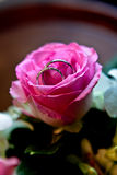 Wedding Rings in a Pink Rose. Close up of a pink Rose with wedding rings in it Royalty Free Stock Photos