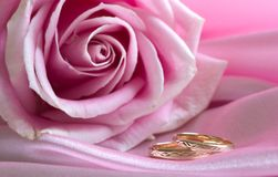 Wedding rings on pink with rose Stock Photos