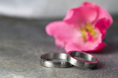 Wedding rings and pink rose Stock Image