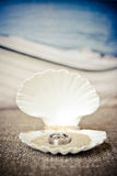 Wedding rings. Placed in a sea shell clam with beach sand. Ocean theme style Royalty Free Stock Photos