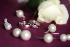 Wedding rings on purple pillow Stock Photography