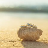 Wedding rings put on the beach. Royalty Free Stock Image