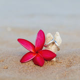 Wedding rings put on the beach Stock Photo