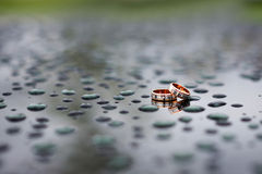 Wedding rings in the rain Stock Image