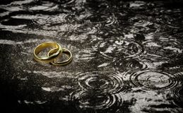 Wedding Rings in The Raindrops. Stock Photo