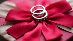 Wedding rings on a red bow.  stock video