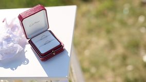 Wedding rings in a red box for rings stock video