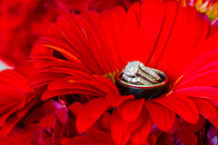 Wedding Rings and Red Flowers Stock Photo