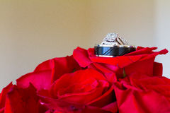 Wedding Rings and Red Flowers Stock Images