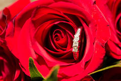 Wedding Rings and Red Flowers Royalty Free Stock Photos