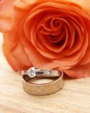 Wedding rings on a red rose. Two white gold wedding rings on a red rose royalty free stock photos