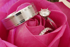 Wedding Rings In Red Rose. Close-Up Of Wedding Rings And Engagement Ring In Red Rose royalty free stock photography