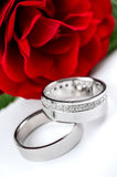 Wedding rings and red rose Stock Photography