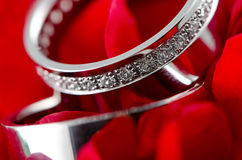 Wedding rings in red rose Stock Photography