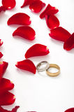 Wedding rings and red rose petals Royalty Free Stock Images