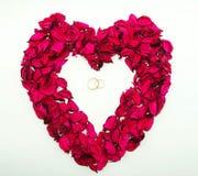 Wedding rings in red rose petals Stock Image