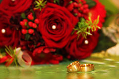 Wedding rings and red roses Stock Images