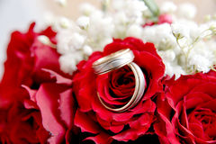 Wedding rings in red roses Royalty Free Stock Photos