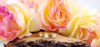 Wedding rings with rose. On wood Royalty Free Stock Photography