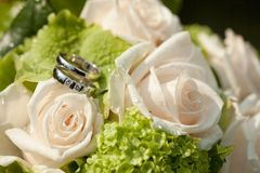 Wedding rings on a rose Stock Images