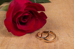 Wedding rings and rose Royalty Free Stock Photo