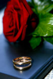 Wedding rings and rose Royalty Free Stock Images