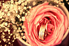 Wedding rings in rose flower with decorations background filtered Royalty Free Stock Photography