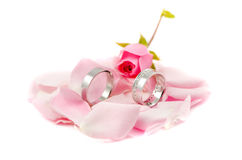 Wedding rings on rose leafs Royalty Free Stock Image