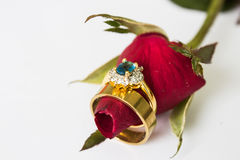 Wedding rings and rose. The meaning of love stay together  Wedding rings and rose Royalty Free Stock Image